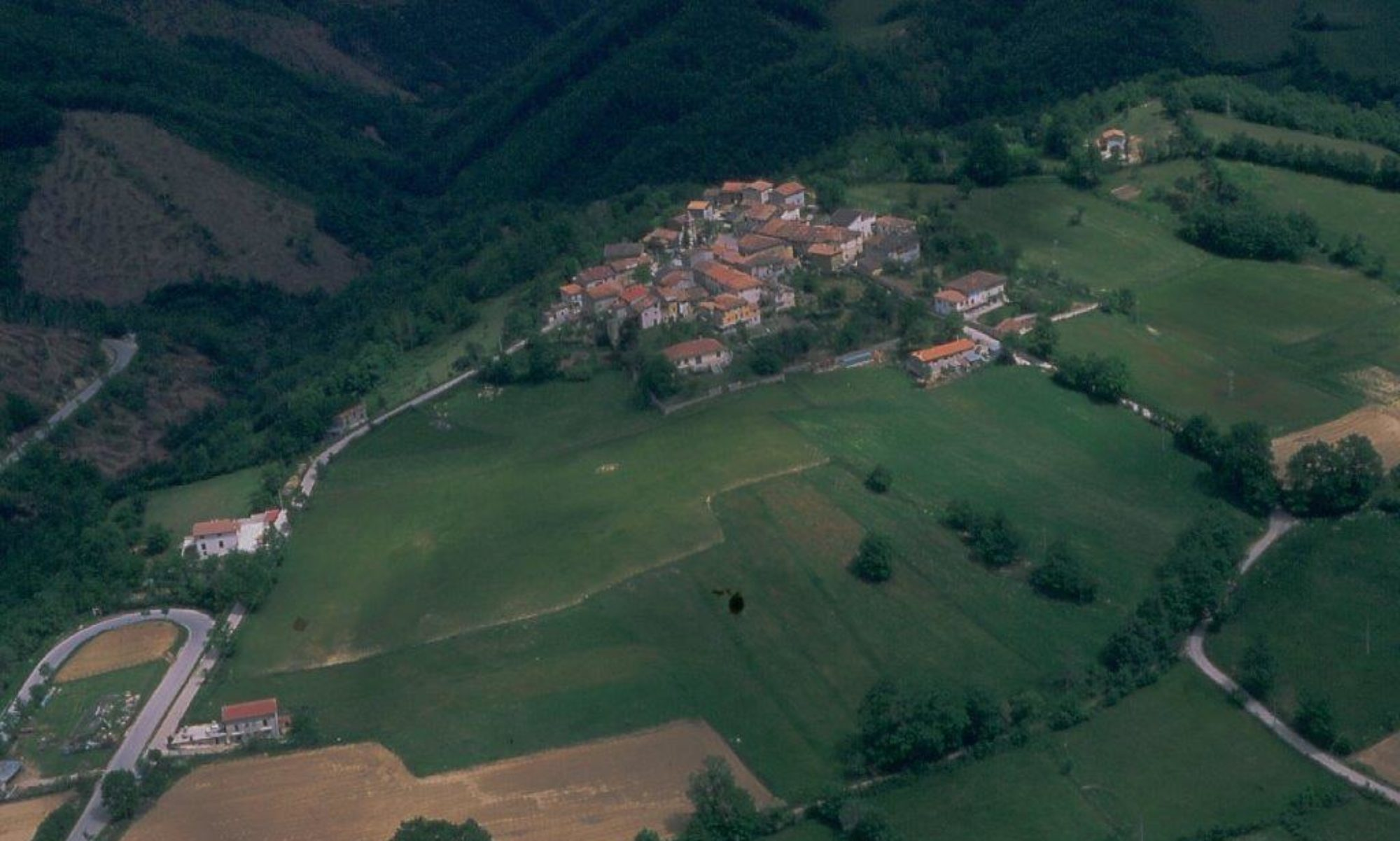Collegentilesco